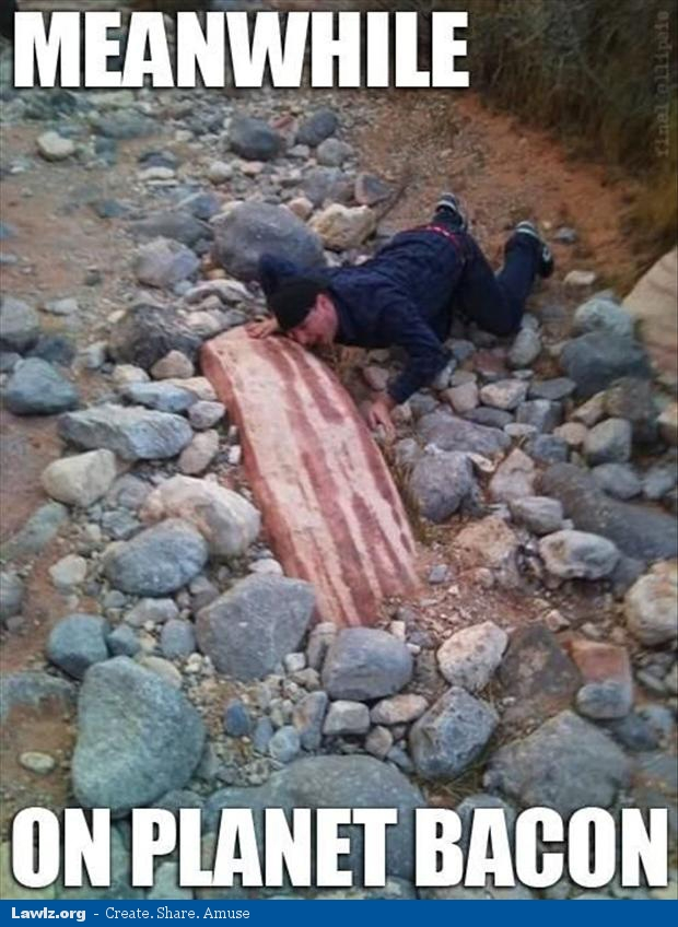 meanwhile-on-planet-bacon-funny-rock-meme